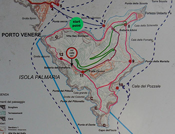 Map of hiking trails of Palmaria Island